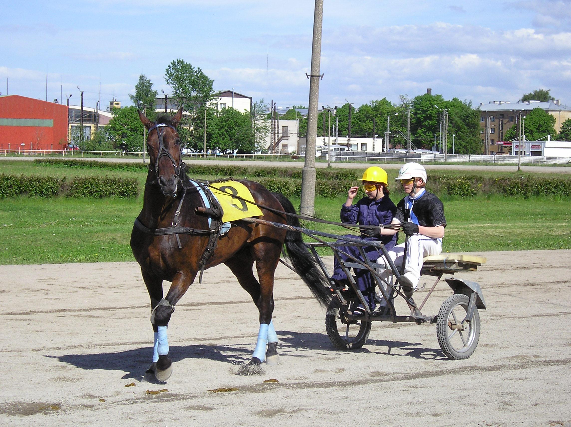 Private race day at the Tallinn Hippodrome